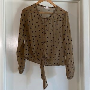 Polkadot Sheer Blouse